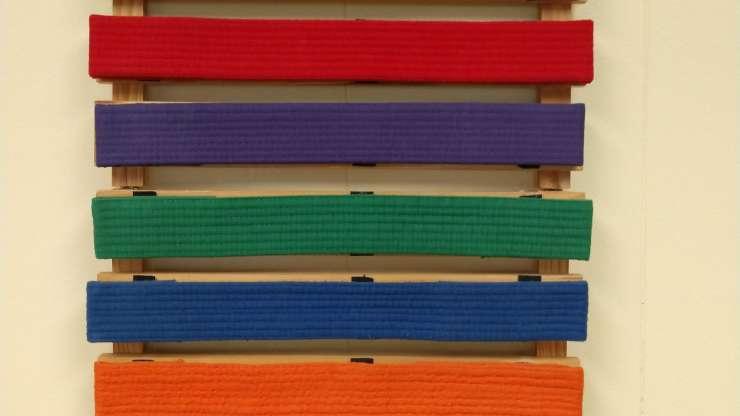 Belt Ranks (Kyu)